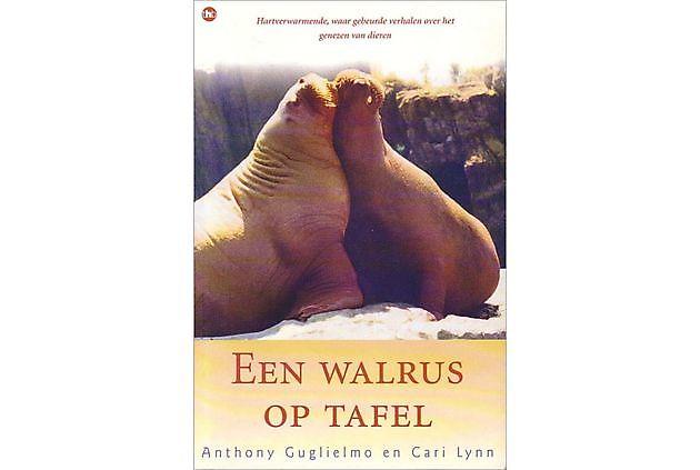 Anthony Guglielmo Een walrus op tafel - Praktijk PrimaVera Finsterwolde